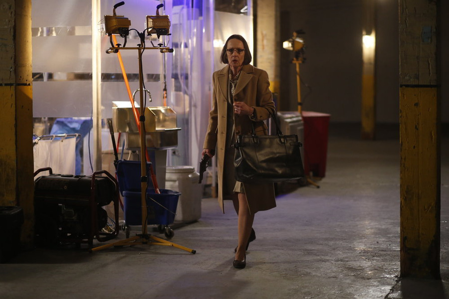 Susan Blommaert in The Blacklist- Season 2