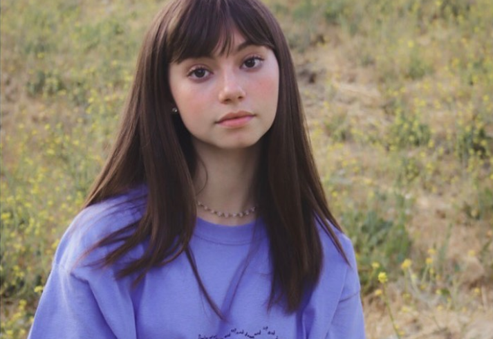 Lauren Lindsey Donzis1